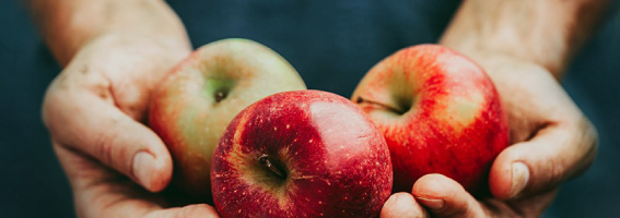 thumbnail_close-up-hands-holding-apples